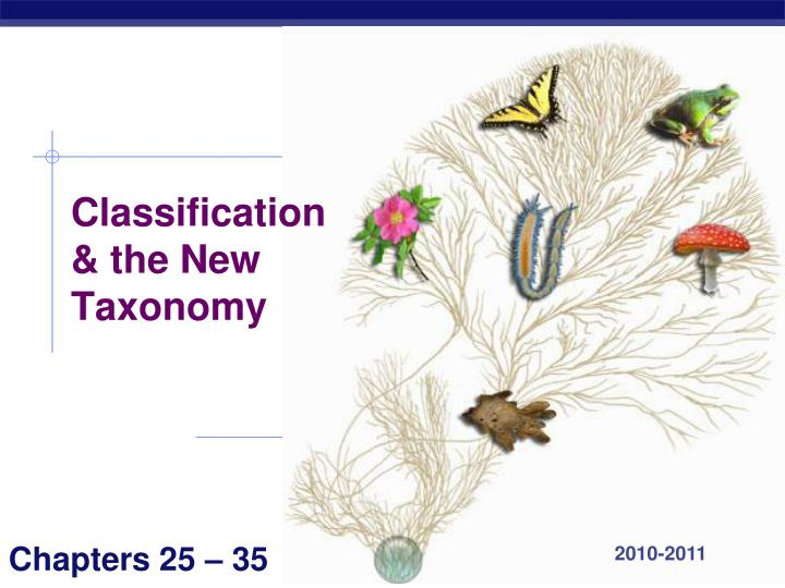 Classification the new taxonomy l.jpg