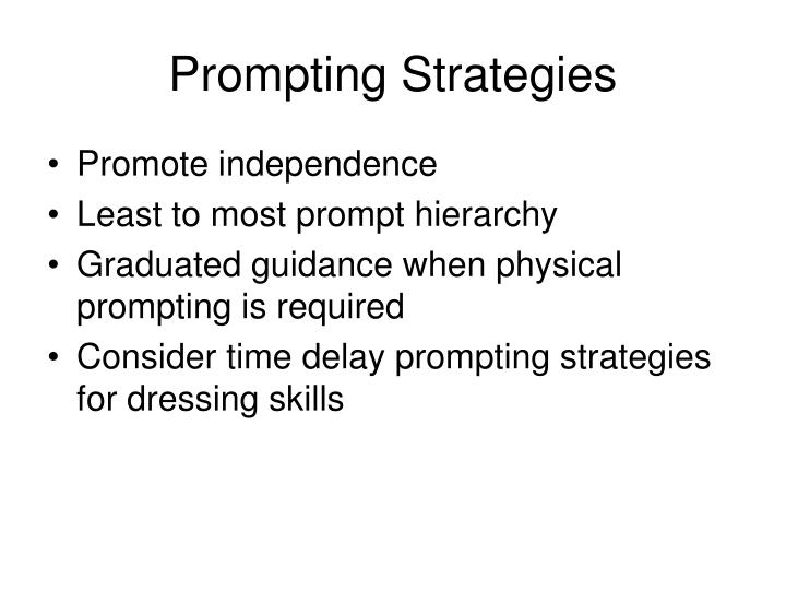 Prompting Strategies