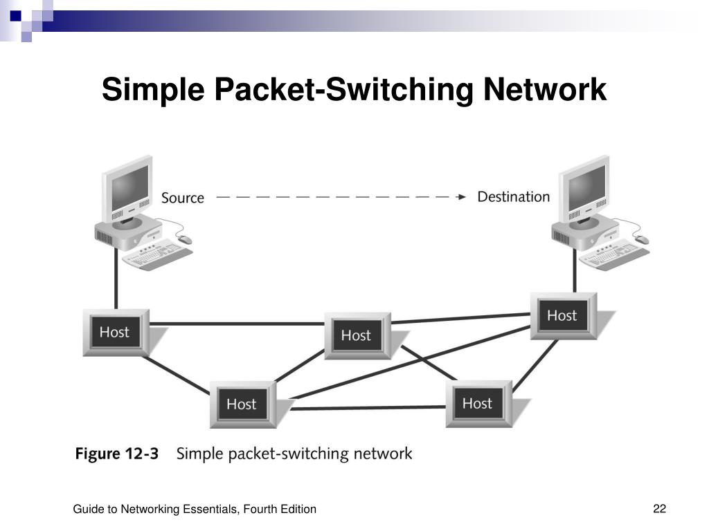 Simple Packet-Switching Network