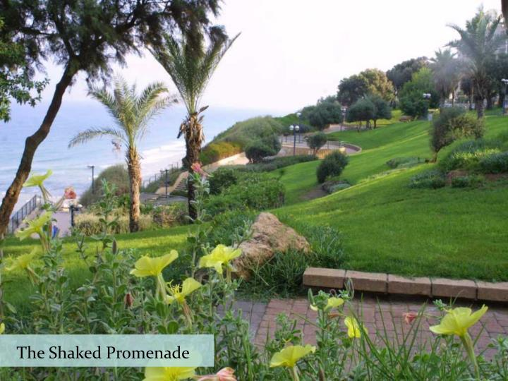 The Shaked Promenade