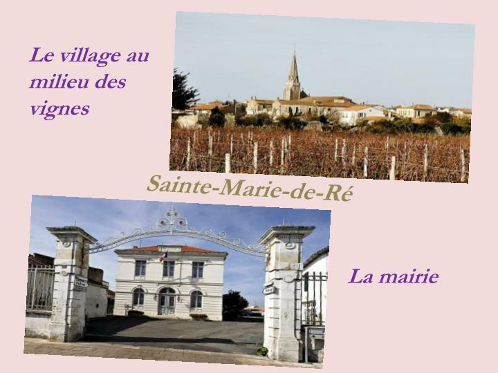 Le village au milieu des vignes