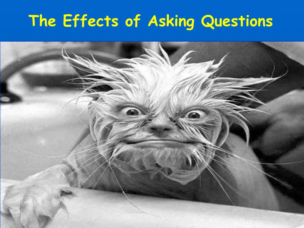 The Effects of Asking Questions