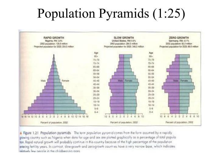 Population Pyramids (1:25)
