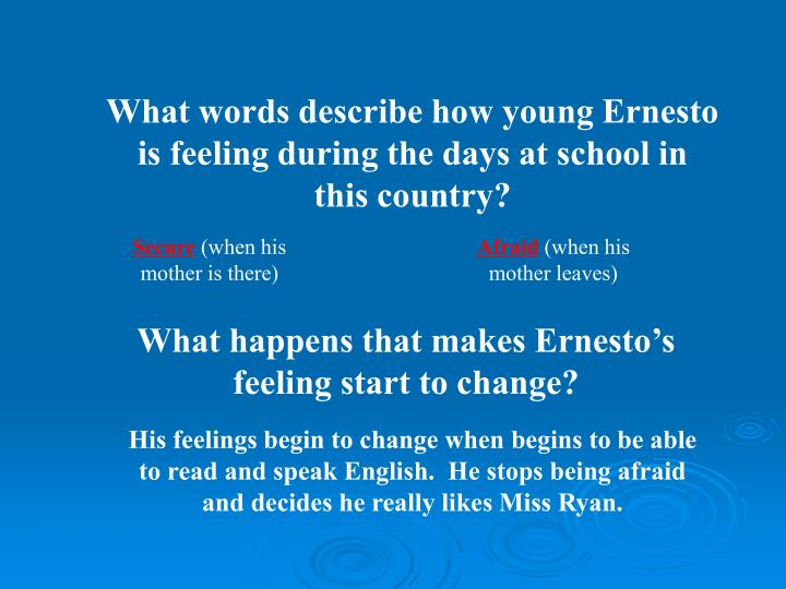 What words describe how young Ernesto is feeling during the days at school in this country?