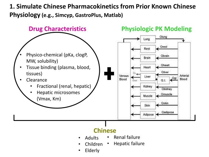 1. Simulate Chinese Pharmacokinetics from Prior Known Chinese Physiology