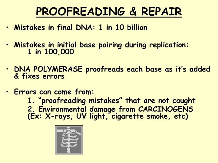 PROOFREADING & REPAIR
