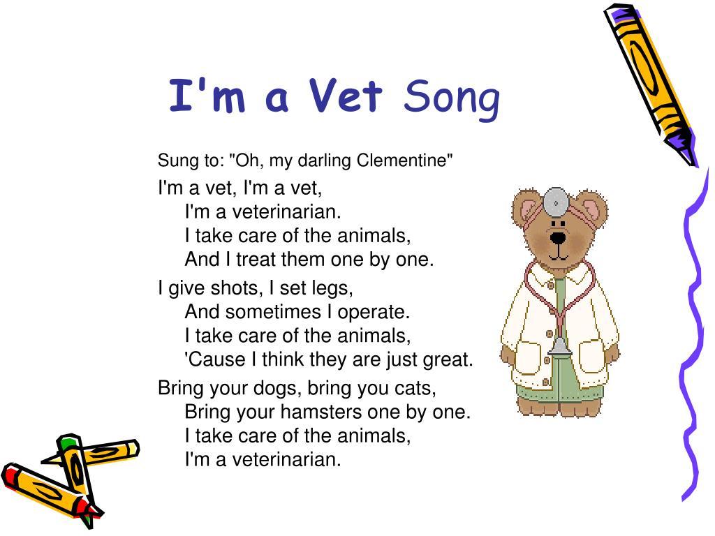 I'm a Vet