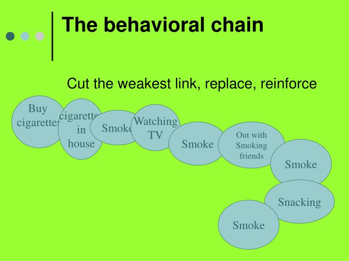 The behavioral chain