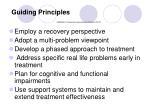 guiding principles s amhsa a treatment improvement protocol tip 42