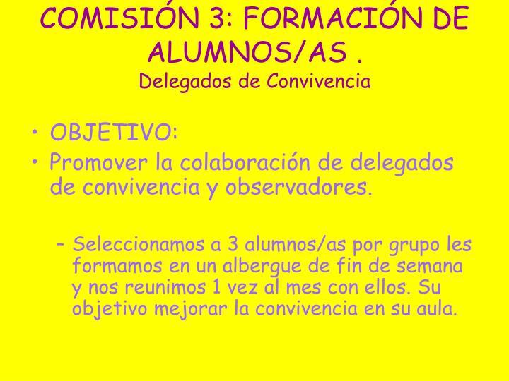 COMISIÓN 3: FORMACIÓN DE ALUMNOS/AS .