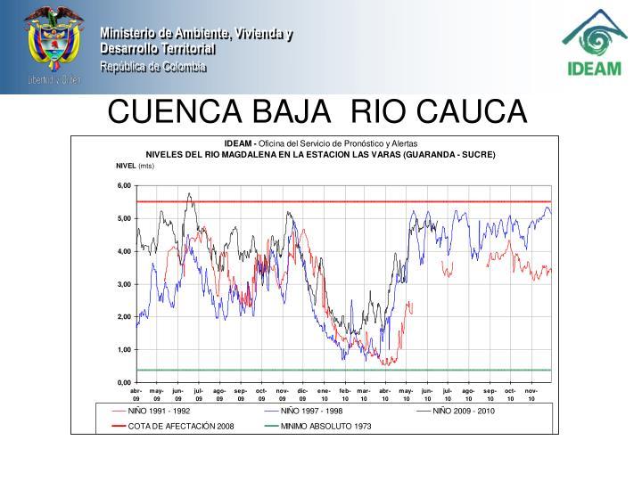 CUENCA BAJA  RIO CAUCA