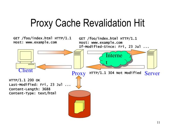 Proxy Cache Revalidation Hit