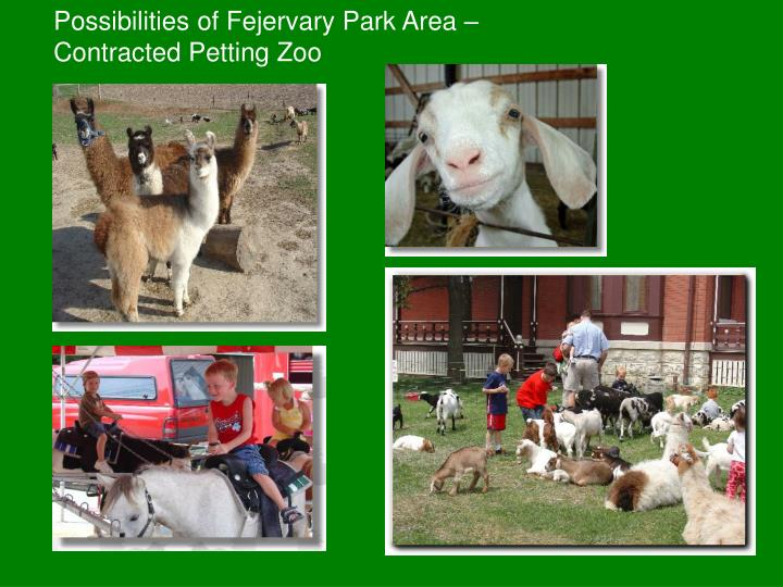 Possibilities of Fejervary Park Area – Contracted Petting Zoo