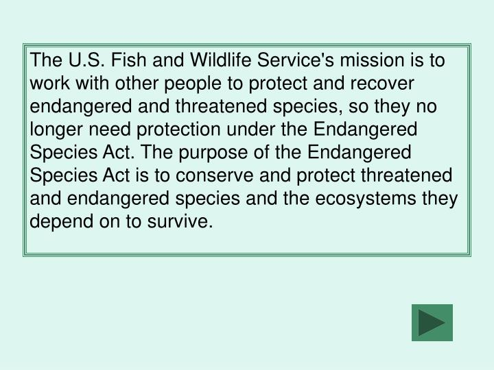 The U.S. Fish and Wildlife Service's mission is to work with other people to protect and recover endangered and threatened species, so they no longer need protection under the Endangered Species Act. The purpose of the Endangered Species Act is to conserve and protect threatened and endangered species and the ecosystems they depend on to survive.