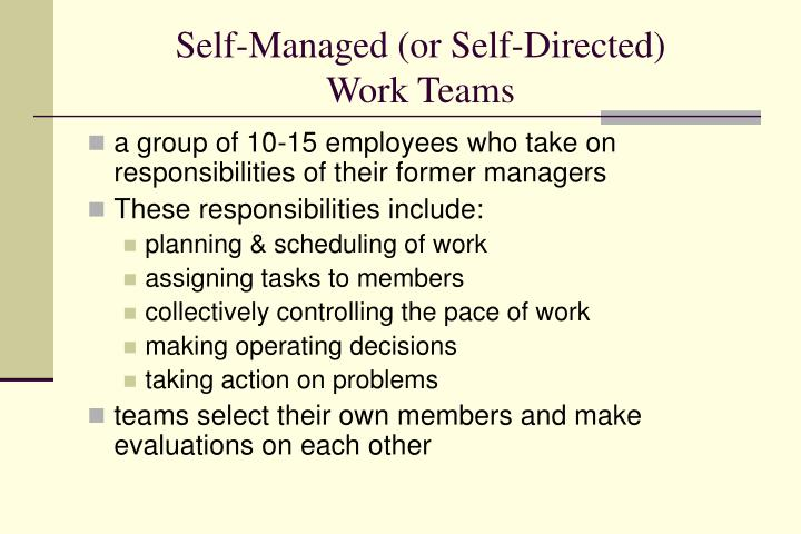Self-Managed (or Self-Directed)