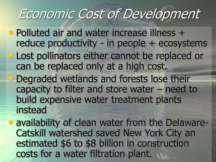 Economic Cost of Development