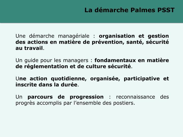 La démarche Palmes PSST