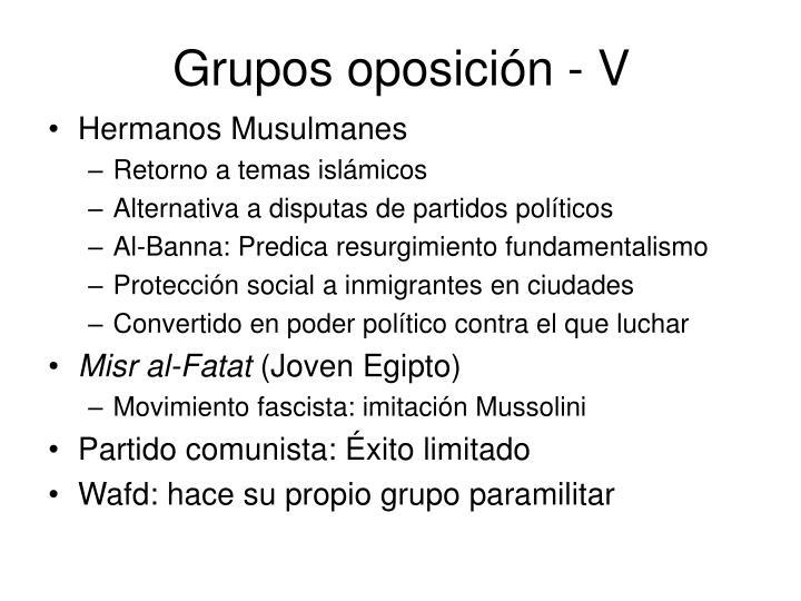 Grupos oposición - V