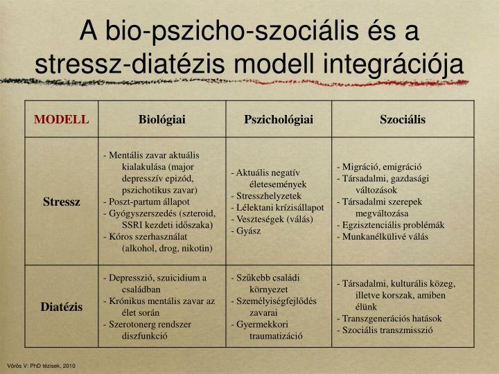 A bio-pszicho-szociális és a stressz-diatézis modell integrációja