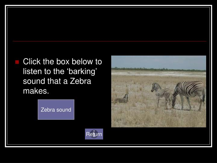 Click the box below to listen to the 'barking' sound that a Zebra makes.