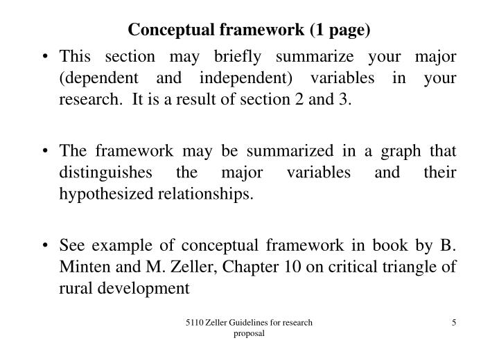 Conceptual framework (1 page)