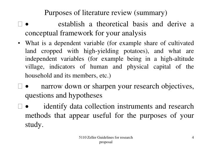 Purposes of literature review (summary)