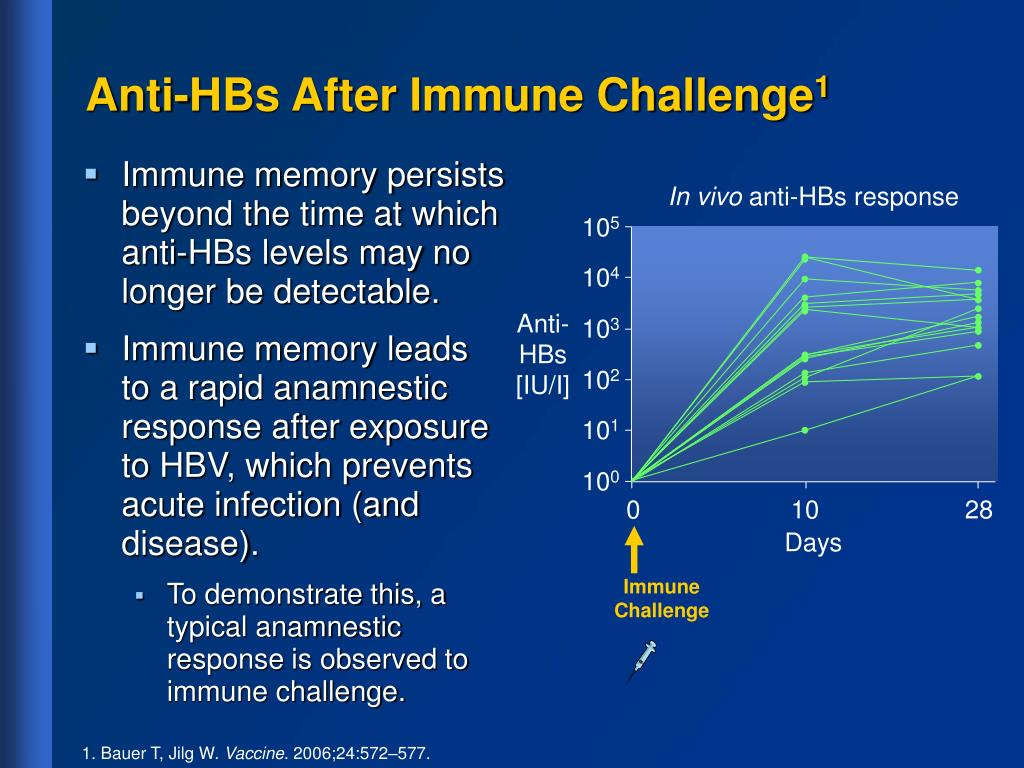 Anti-HBs After Immune Challenge