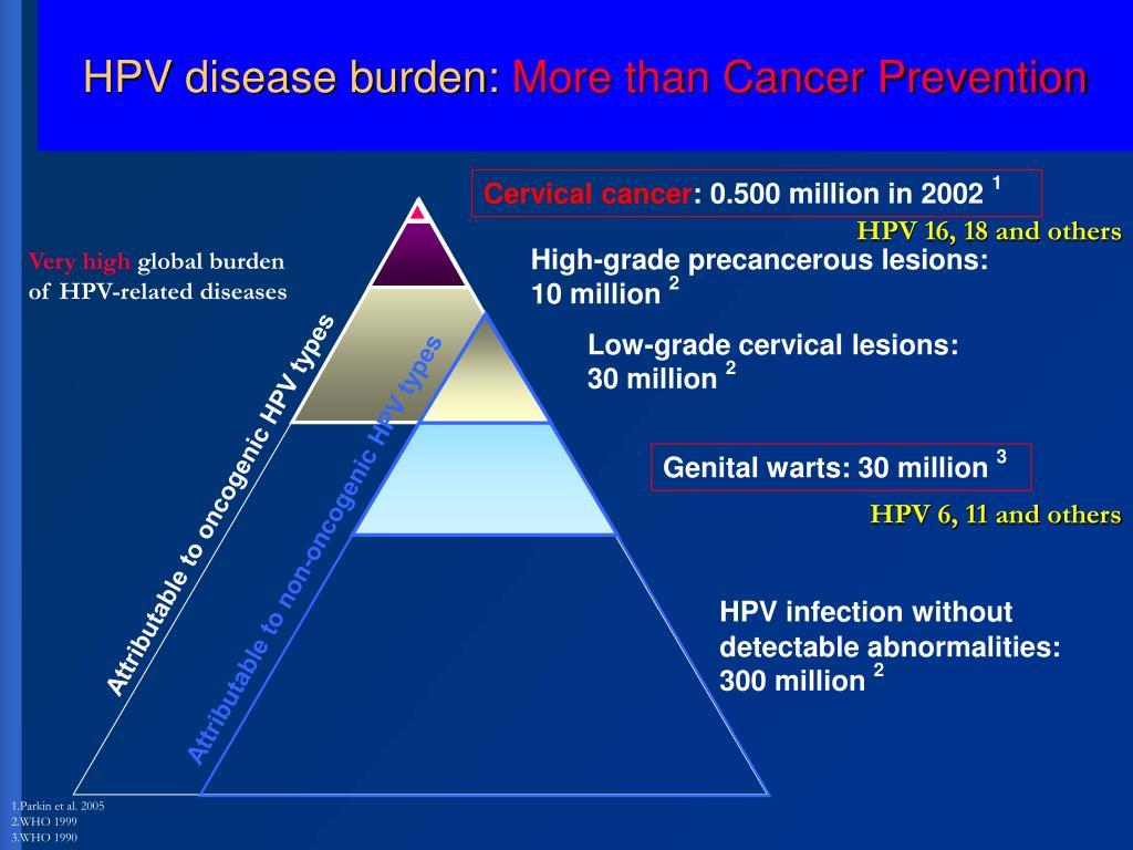 HPV disease burden: