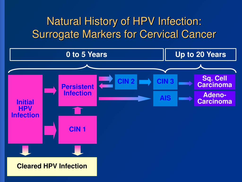 Natural History of HPV Infection: