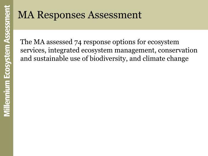 MA Responses Assessment