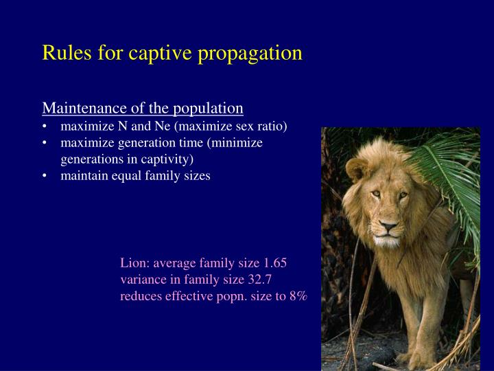 Rules for captive propagation