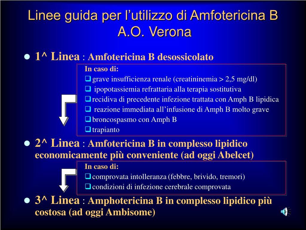 Linee guida per l'utilizzo di Amfotericina B