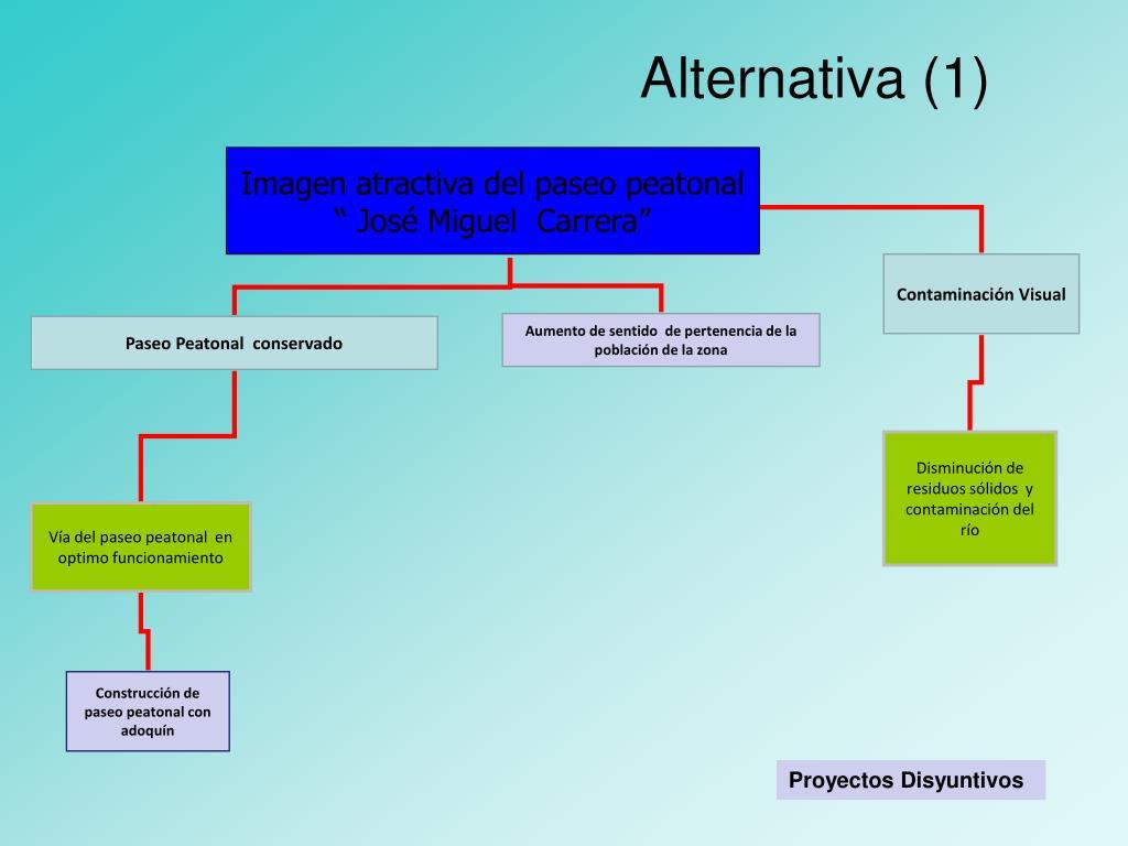 Alternativa (1)