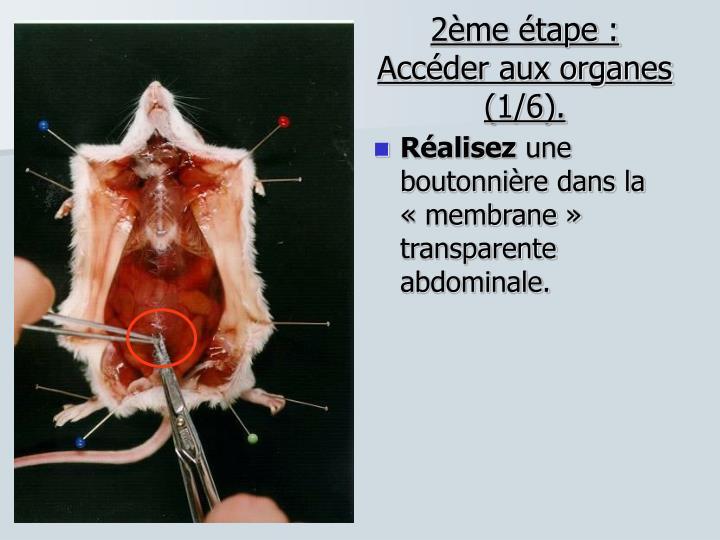 2ème étape : Accéder aux organes (1/6).