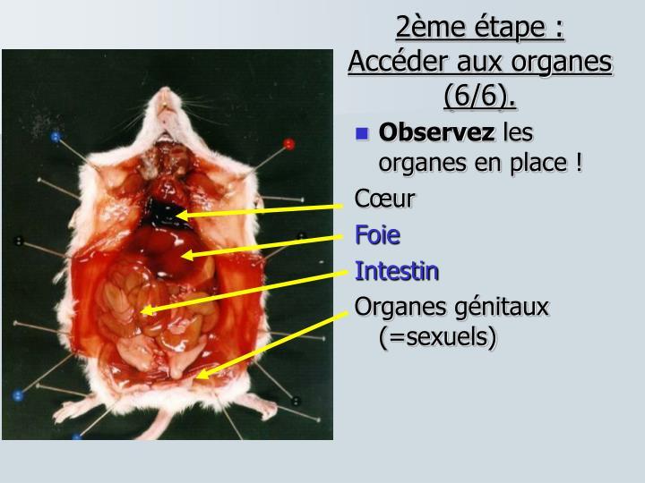 2ème étape : Accéder aux organes (6/6).