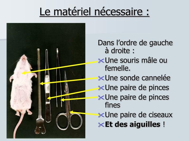 Le matériel nécessaire :