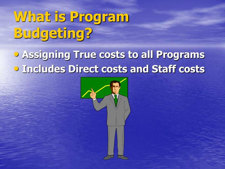 What is Program Budgeting?
