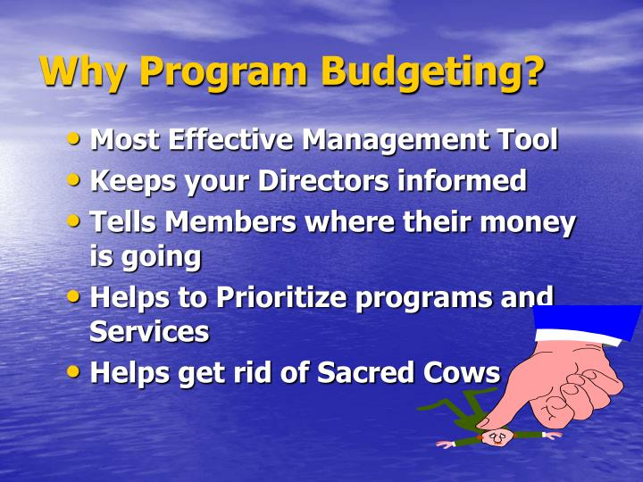 Why Program Budgeting?