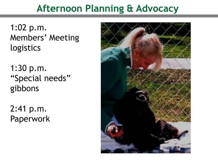 Afternoon Planning & Advocacy
