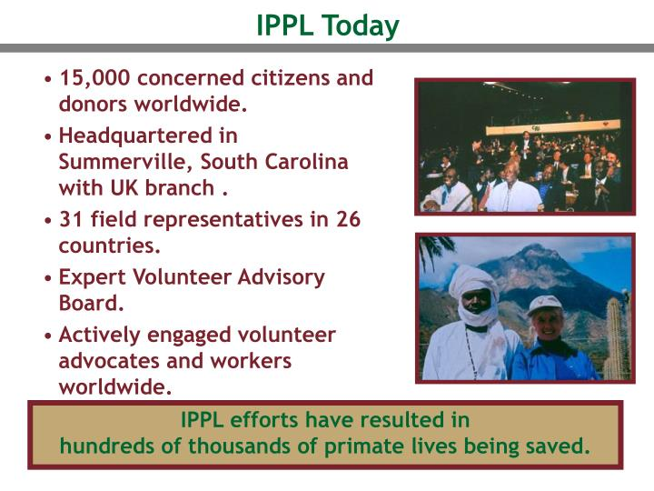 IPPL Today