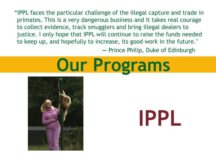 """IPPL faces the particular challenge of the illegal capture and trade in primates. This is a very dangerous business and it takes real courage to collect evidence, track smugglers and bring illegal dealers to justice. I only hope that IPPL will continue to raise the funds needed to keep up, and hopefully to increase, its good work in the future."""