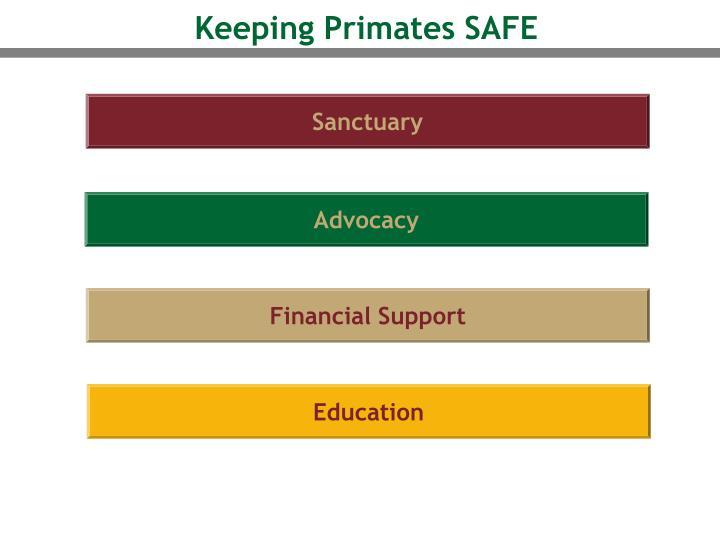 Keeping Primates SAFE
