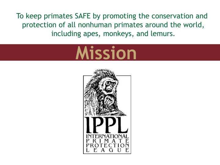 To keep primates SAFE by promoting the conservation and protection of all nonhuman primates around the world, including apes, monkeys, and lemurs.
