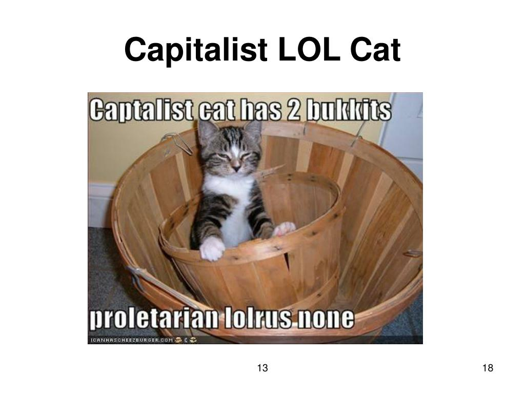 Capitalist LOL Cat