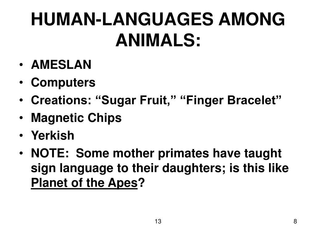 HUMAN-LANGUAGES AMONG ANIMALS: