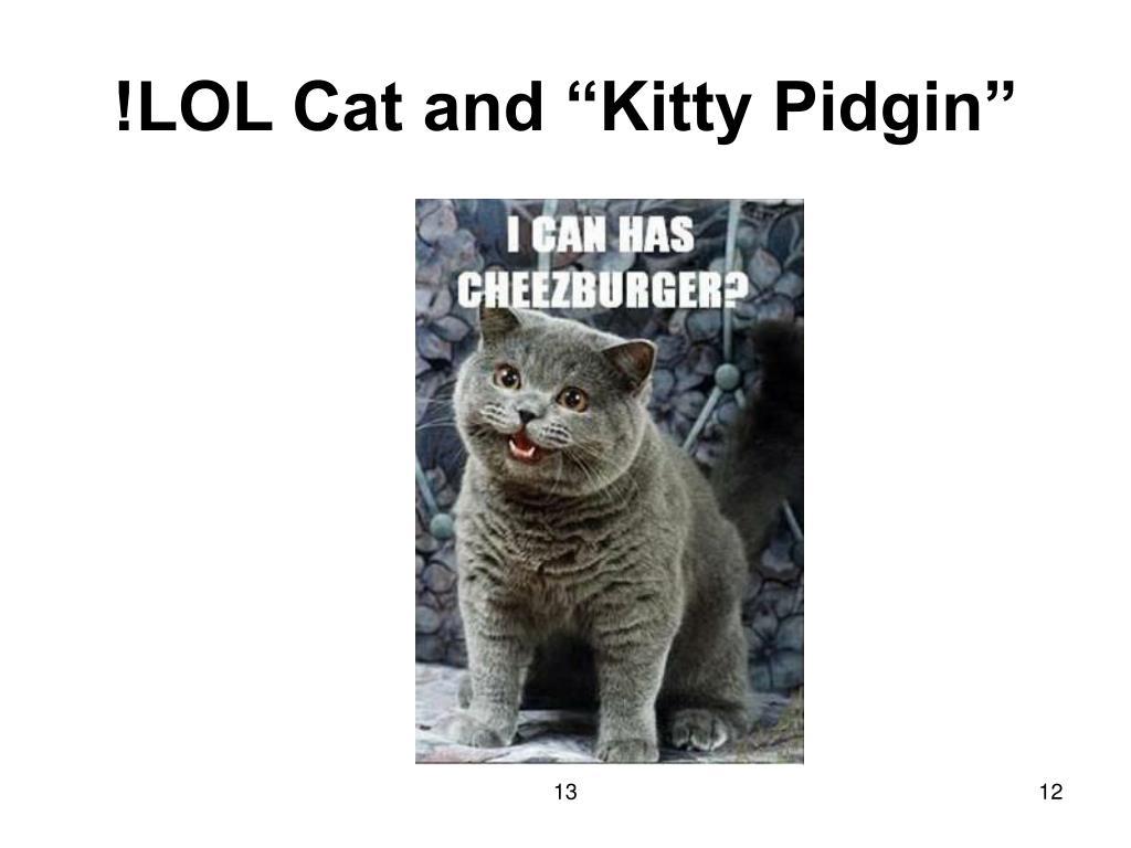 "!LOL Cat and ""Kitty Pidgin"""