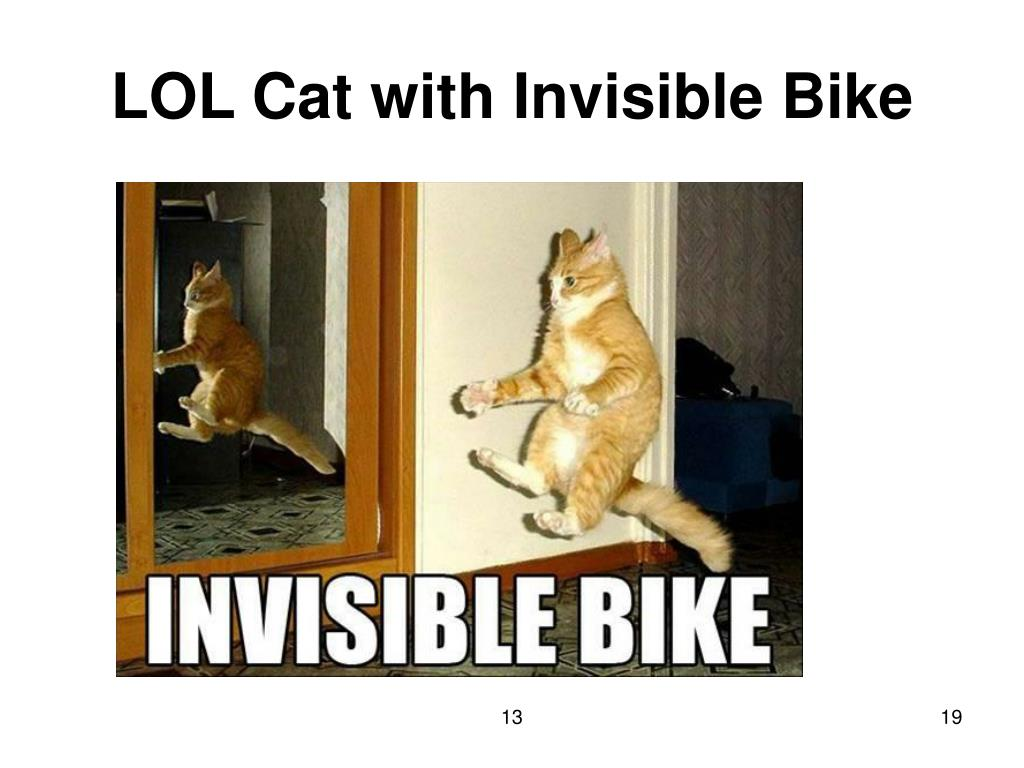 LOL Cat with Invisible Bike