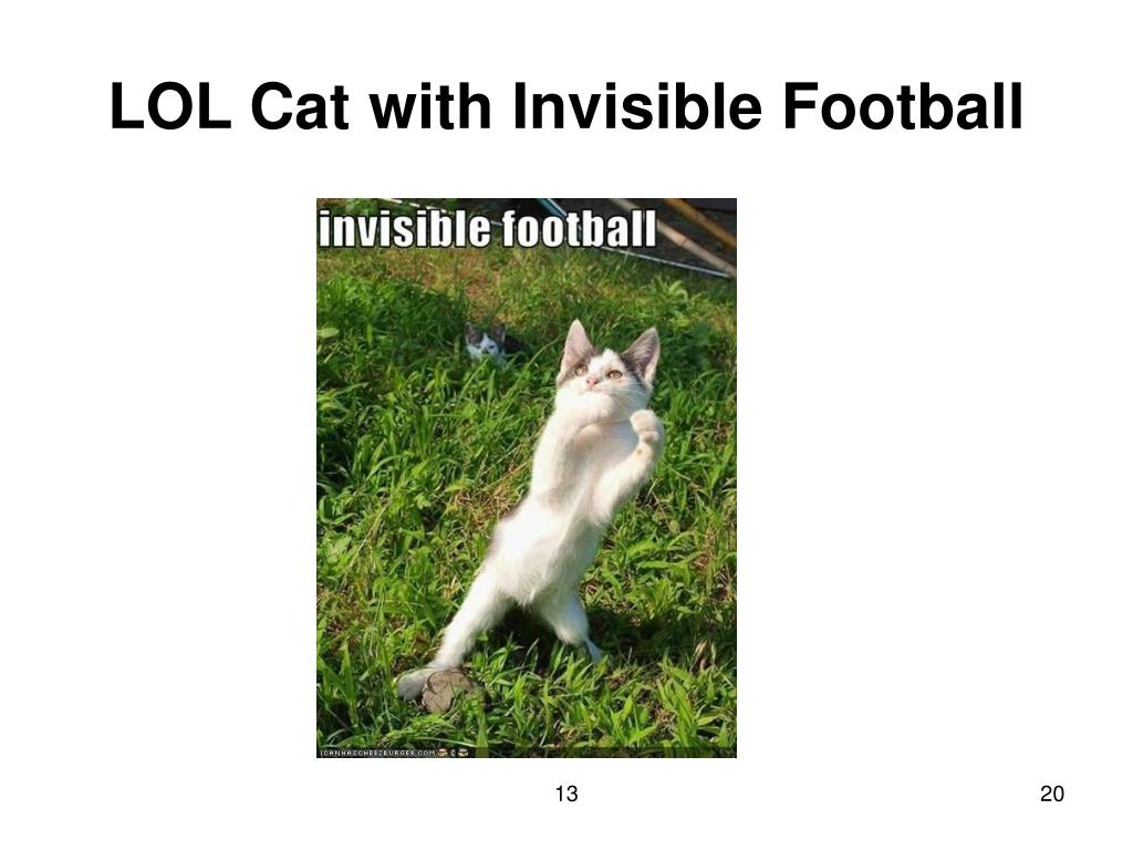 LOL Cat with Invisible Football