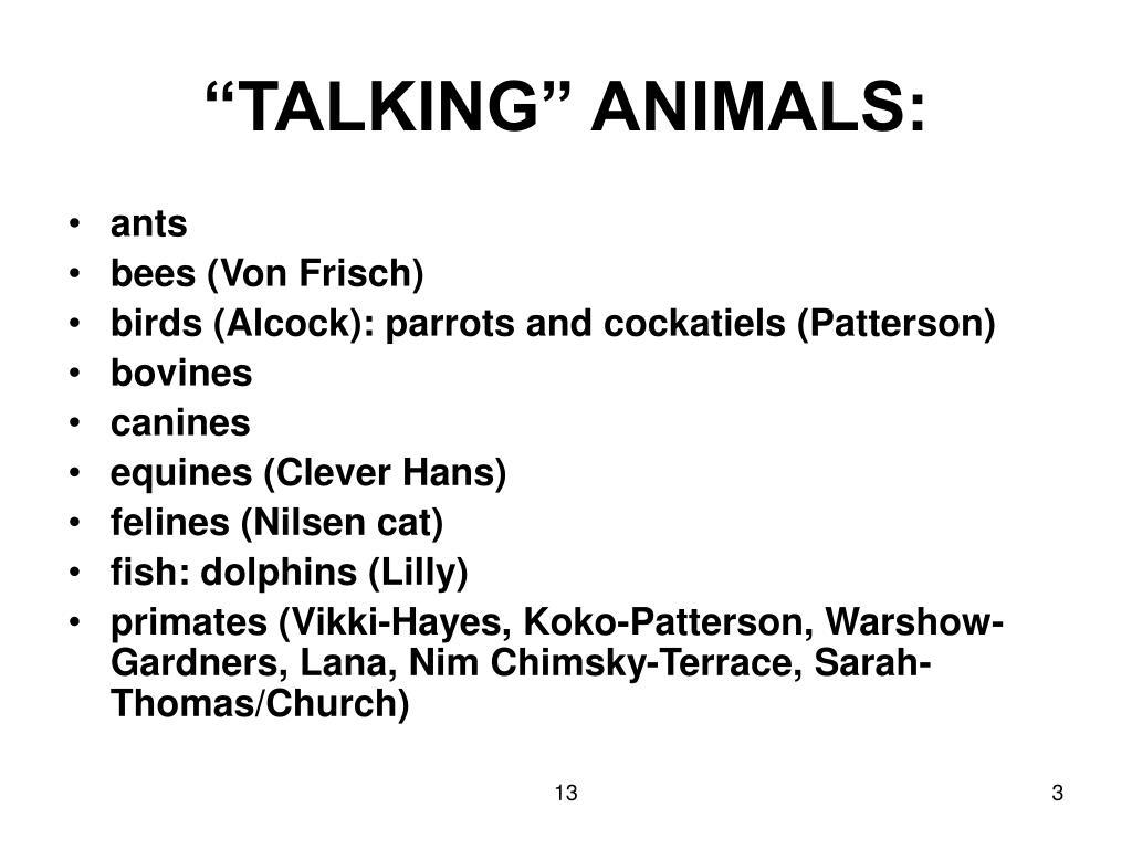 """TALKING"" ANIMALS:"