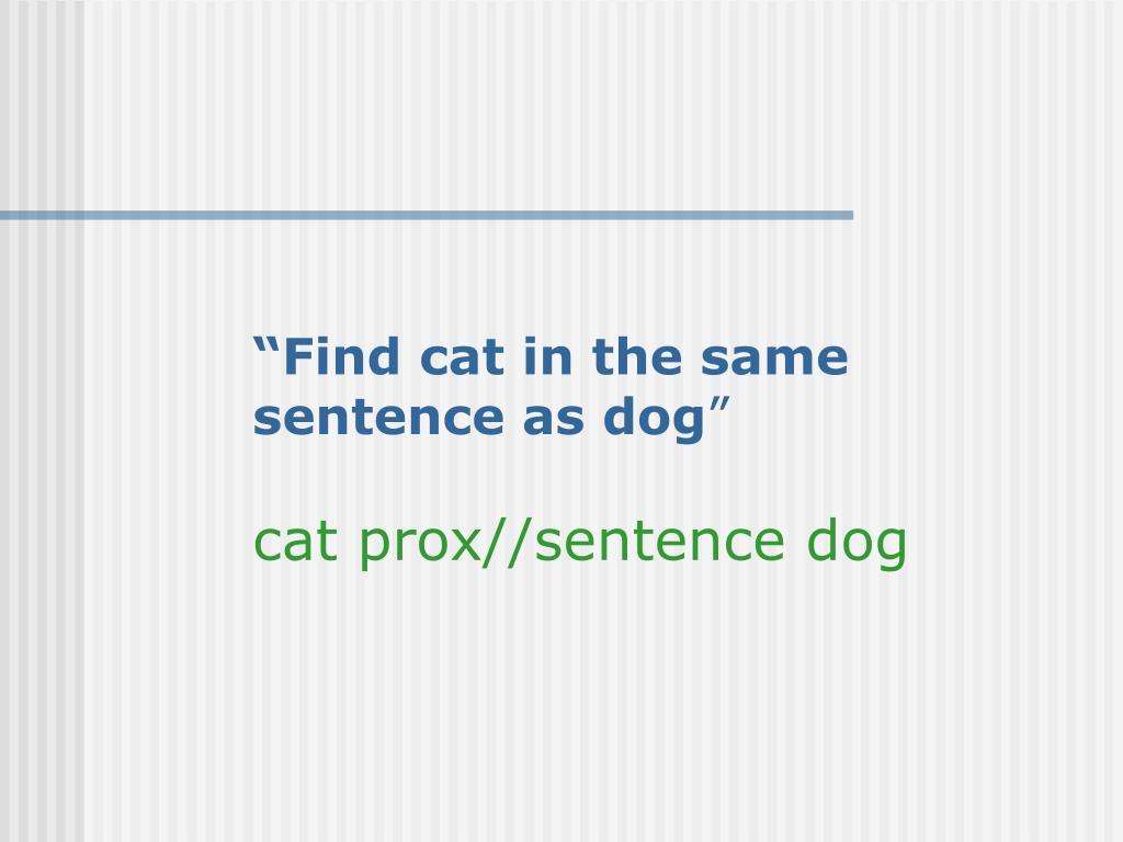 """""""Find cat in the same"""